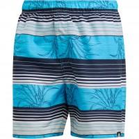 Adidas Stripe Shorts